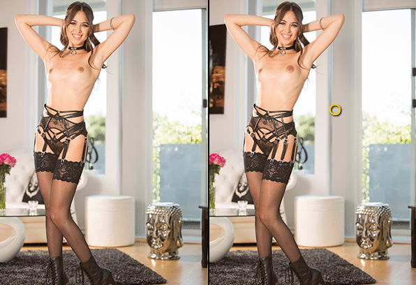 Spot the Differences: Riley Reid